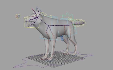 wolfrig